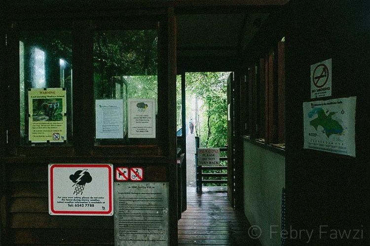 treetop-walk-macritchie-singapore-by-febry-fawzi-9