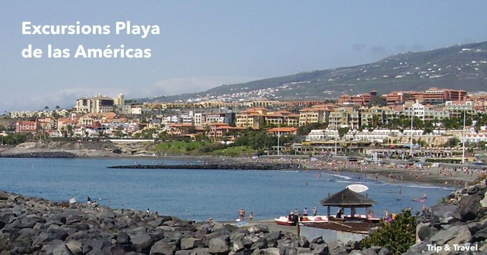 Excursions Playa de las Américas, Tenerife, Canary Islands, hotels, car renting, Spain, holidays, dolphins show, whales watching, restaurants, España, Islas Canarias