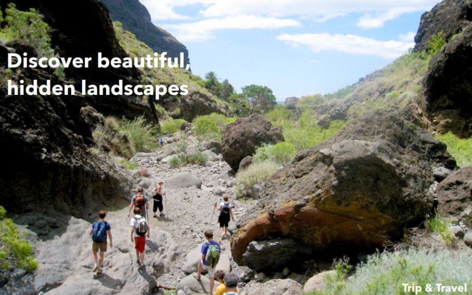 Tenerife Best Excursions, Canary Islands, reservations, hotels, holidays, tickets, car renting, trekking, dolphins show, whales watching, snorkeling, scuba diving, Spain