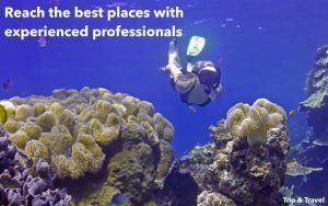 Tenerife Excursions Snorkeling, jetski, Canary Islands, scuba diving, Spain, sea, whales watching, fishing, zealot boats, restaurants, reservations, tickets, hotels, parascending