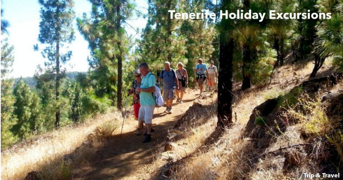 Tenerife Holiday Excursions, reservations, hotels, holidays, reservations, tickets, Canary Islands, buggies, jeeps, quads, scuba diving, trekking, whales watching