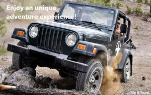 Tenerife Jeep Excursions, hotels, reservations, tickets, holidays, buggys, trekking, Canary Islands, Spain, restaurants, Islas Canarias, España, whales watching, quads