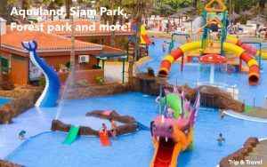 Tenerife Tourist Attractions, Siam Park, Loro Parque, Dolphins Show, Canary Islands, Spain, reservations, hotels, tickets, car renting, Jungle Park, Pirámides de Güímar