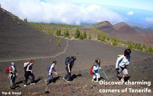 Tenerife Trips and Excursions, Canary Islands, Spain, hotels, holidays, reservations, tickets, trekking, quads, fishing, whales watching, car renting, paella cooking show