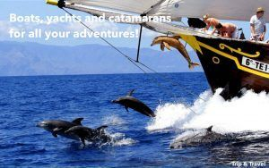 Playa de las Américas Things To Do, tours, Tenerife, reservations, hotels, cheap, trips, excursions, restaurants, dolphins show, whales watching, tickets, parascending