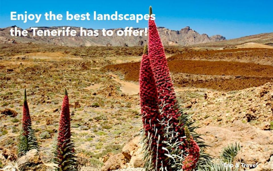 Tenerife Volcano Excursions, hotels, cheap, tickets, trips, tours, events, reservations, restaurants, trekking, hiking, Canary Islands, Teide, jeeps, buggies, quads, car renting