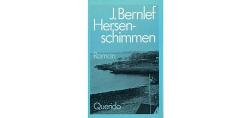 Cover van boek: hersenschimmen j bernlef