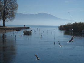 Struga (7)