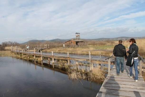Park prirode Vransko Jezero (22)