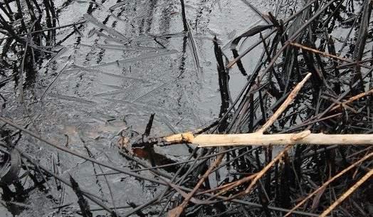 Ekološka katastrofa u Kninu u veljači ove godine