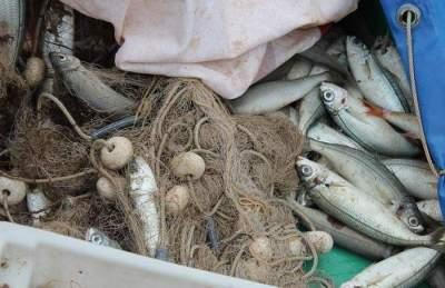 Od 1. ožujka više nema 'malih ribara': Udarac europskih propisa ionako teškom životu na obali Jadrana