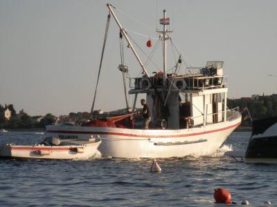 """Pad uzgoja slatkovodne ribe i ulova morske- EK hrvatskim ribarima nudi """"struganje"""" flote"""