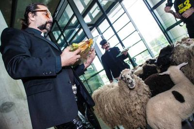 Mrle i ovce u muzeju (foto: www.ravnododna.com) Mrle i ovce u muzeju (foto:www.ravnododna.com)