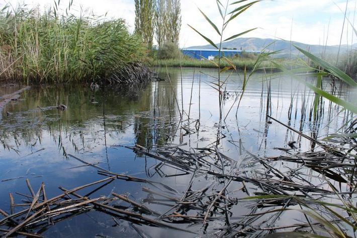 Kiše počistile kninsku lagunu mazuta (Foto H. Pavić) (24)
