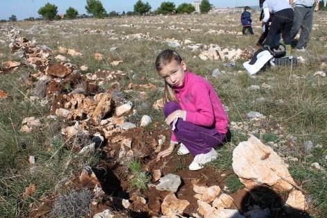 Eko akcija 'Posadi stablo' (Foto H. Pavić) (10)