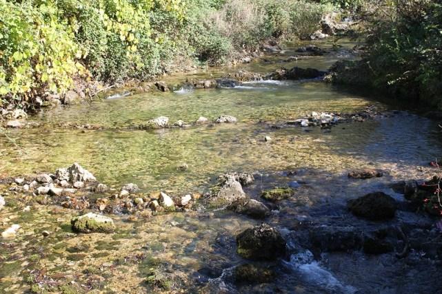 Rijeka orašnica u Gugama, prije ulaska u Knin i onečišćenja (Foto H. Pavić)