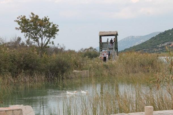 Vransko jezero (Foto H. Pavić) (4)