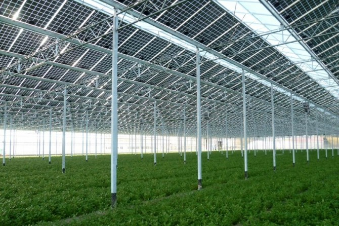 Nova elektrana-vrt će izgledati nekako ovako (izvor slatina.hr)nekako će izgledati