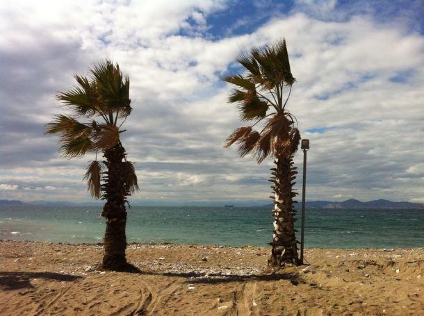 Dvije grčke palme