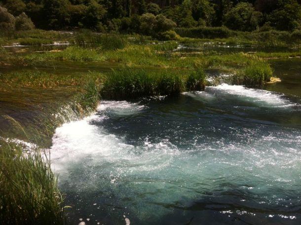 Krka šumi, voda teče, a Gibboni će zapjevati (foto TRIS/GŠ)