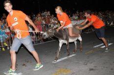 10. međunarodna trka tovarov - 10. međunarodna utrka magaraca (18)