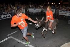 10. međunarodna trka tovarov - 10. međunarodna utrka magaraca (24)