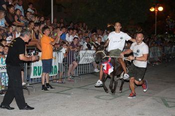 10. međunarodna trka tovarov - 10. međunarodna utrka magaraca (27)