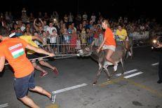 10. međunarodna trka tovarov - 10. međunarodna utrka magaraca (36)