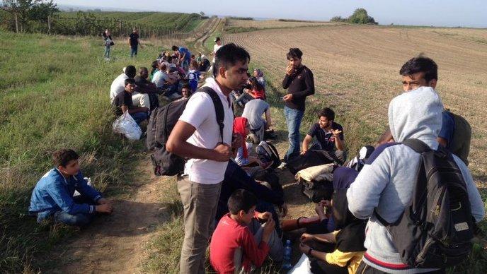 Izvjeglice (Foto: Davor Lončarić/HRT)