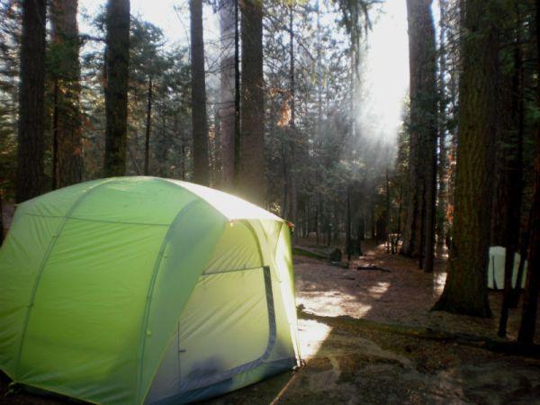 Yosemitska šuma - neloše mjesto za buđenje