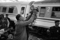 Vlak (foto Hrvoje Polan)