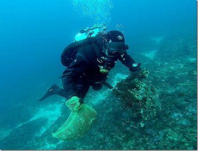 Akcija čišćenja kornatskog podmorja