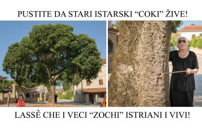 Foto: Zelena Istra