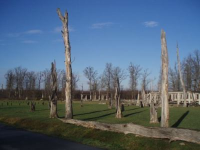Documenta: Osuđujemo podizanje spomenika majoru Milanu Tepiću u Beogradu