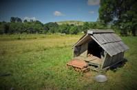Lička pseća kuća (foto TRIS/G. Šimac)