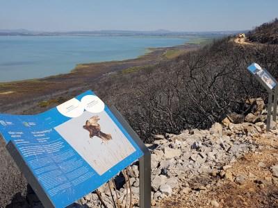 U Parku prirode Vransko jezero opožareno470 tisuća četvornih metara ornitološkog rezervata