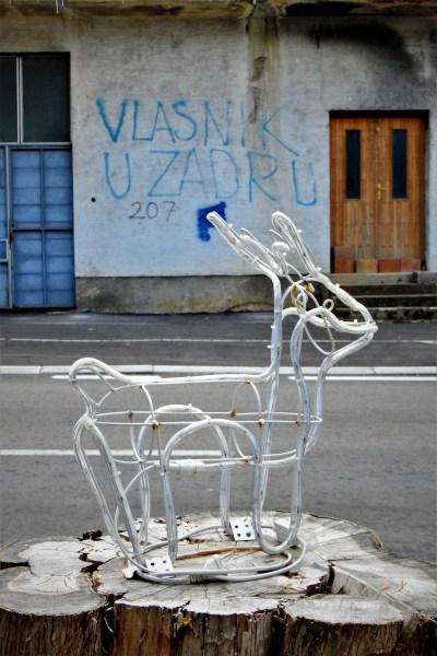 'Vlasnik u Zadru' (foto TRIS/G. Šimac)