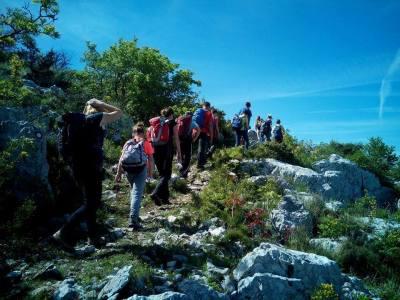 Priroda i društvo: Škola bez zidova kojoj se djeca vesele