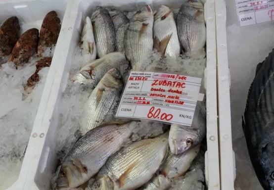 Povodom Svjetskog dana hrane WWF upozorava:Oceani i mora izlovljeni su do svojih maksimuma