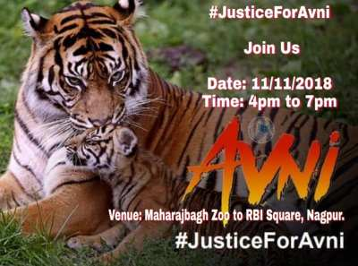 Globalni prosvjed za spas tigrića: 11.11. u 11 sati