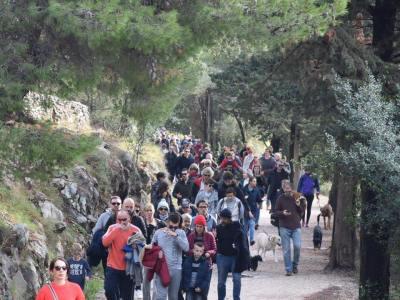 Splićani se bude: Tisuću šetača za spas Marjana i protiv nesposobnosti i nemara