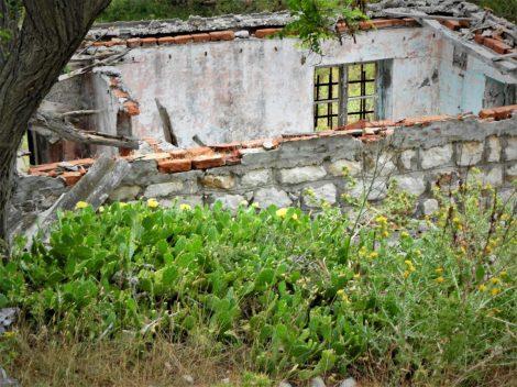Jedna od nebrojenih ruševina(foto TRIS/G. Šimac)