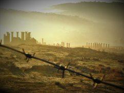 Zora u Jerashu (foto TRIS/G. ŠIMAC)