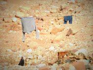 Izbjegličko sušilo (foto TRIS/G. ŠIMAC)