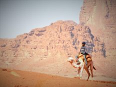 Usamljeni jahač deve (foto TRIS/G. ŠIMAC)
