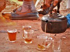 Čaj (foto TRIS/G. ŠIMAC)