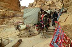 Beduini na povratku iz Ad (foto Joso Gracin Joka)