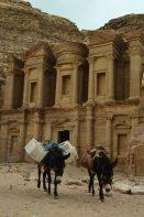 Magarci ispred Ad Deire (foto Joso Gracin Joka)