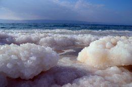 Nakupine soli na plaži (foto J. Gracin)