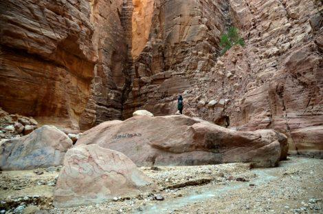 U srcu Wadi Numeire (foto J. Gracin)
